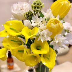 🌷今月のお花たち🌷